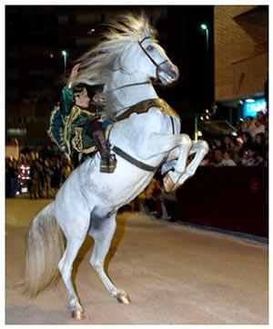 caballo(1)